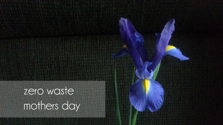 20150510_192603-mothers-day-love-a-dream-lived-greener