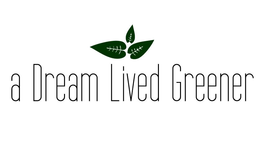 webshop a dream lived greener shop zero waste ottawa canada