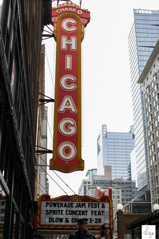 dream love grow ottawa photography_chicago illinois-6789