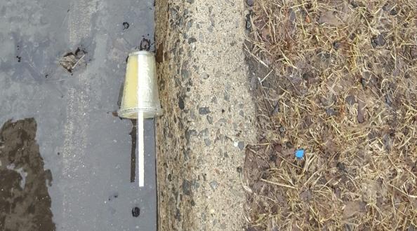 plasticfree ban the ban ban single use plastics ottawa
